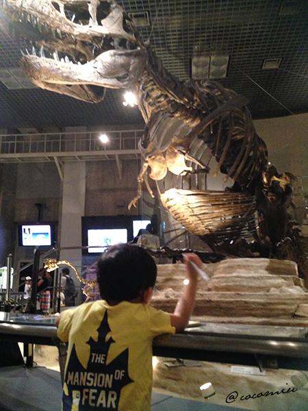 東京 科学博物館 上野